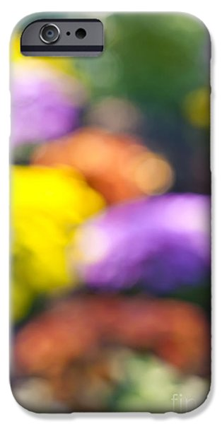 Flower garden in sunshine iPhone Case by Elena Elisseeva