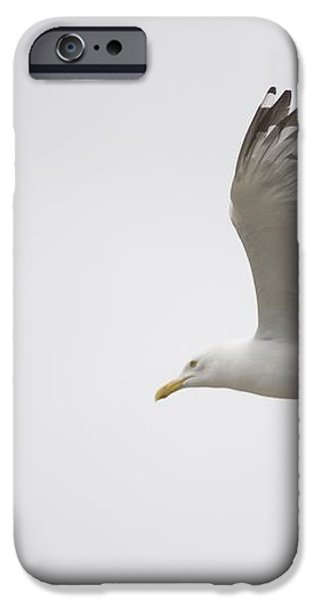 Lake Of The Woods, Ontario, Canada iPhone Case by Keith Levit
