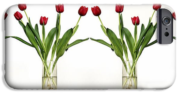 Cut-outs iPhone Cases - 4 Vases Of Tulips  iPhone Case by Eyal Fischer