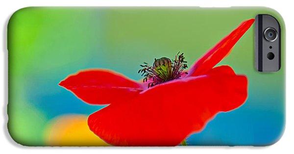 Decorativ iPhone Cases - Poppy iPhone Case by Silke Magino