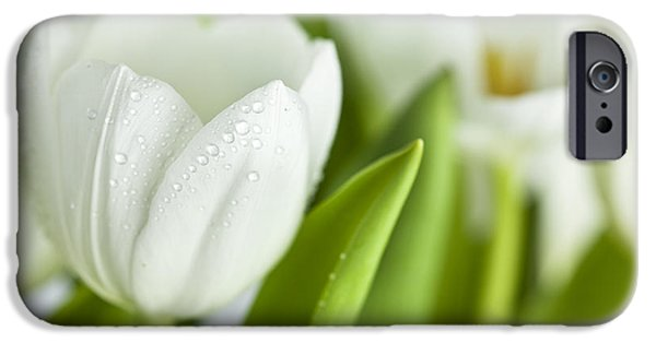 Flora Photographs iPhone Cases - White Tulips iPhone Case by Nailia Schwarz
