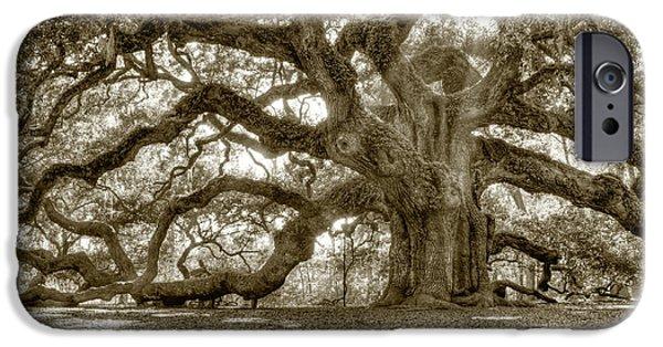 Oak Trees iPhone Cases - Angel Oak Live Oak Tree iPhone Case by Dustin K Ryan