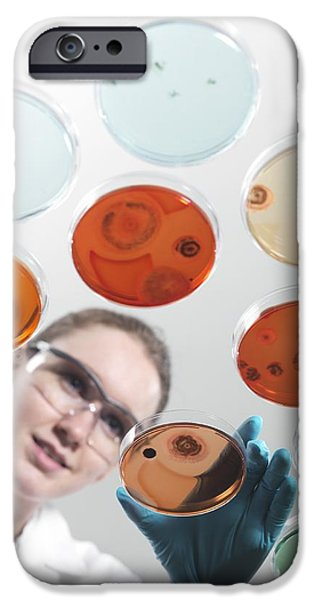 Microbiology Research iPhone Case by Tek Image