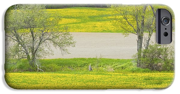 Agriculture iPhone Cases - Spring Farm Landscape With Dandelion bloom in Maine iPhone Case by Keith Webber Jr