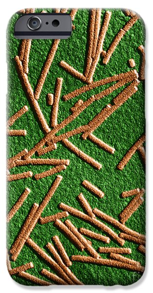 Tobacco Mosaic Virus, Tem iPhone Case by Omikron
