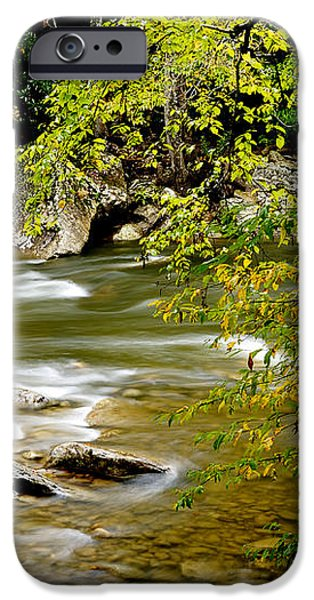 Fall along Williams River iPhone Case by Thomas R Fletcher