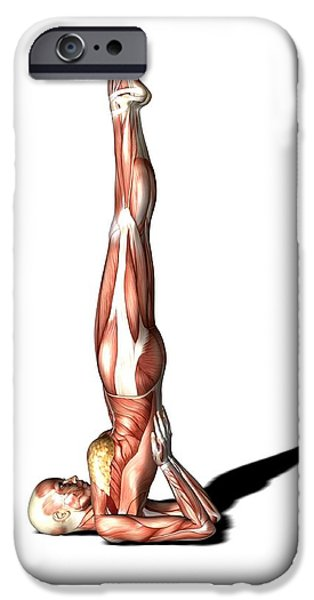 Female Muscles, Artwork iPhone Case by Friedrich Saurer