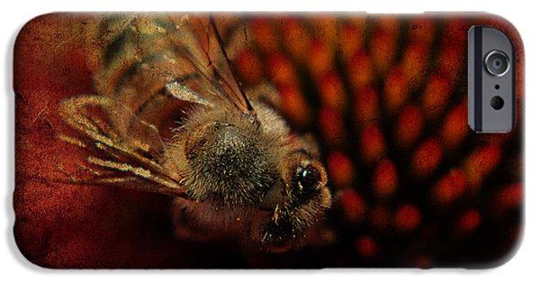 Biden iPhone Cases - a Bee iPhone Case by Billie-Jo Miller