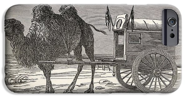 Nineteenth iPhone Cases - A Camel Pulling A Carriage iPhone Case by Ken Welsh