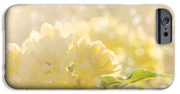 Amy Tyler Photography iPhone Cases - A Chance of Showers iPhone Case by Amy Tyler