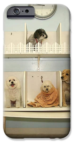 A day at the Doggie Day Spa iPhone Case by Michael Ledray
