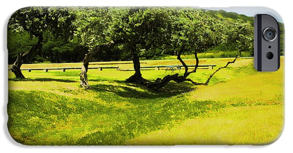 Hawaiian Food iPhone Cases - A day in the Park iPhone Case by Cheryl Young