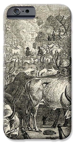 A Dinka Cattle Park, Southern Sudan iPhone Case by Ken Welsh