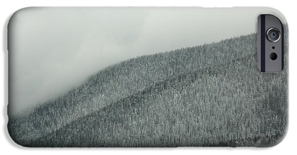 Arapaho iPhone Cases - A Forests Echo iPhone Case by Dana DiPasquale