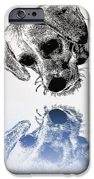 Puppy Digital Art iPhone Cases - A Friendly Reflection iPhone Case by Bill Cannon