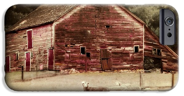 Barns Digital Art iPhone Cases - A Grazy Day iPhone Case by Julie Hamilton