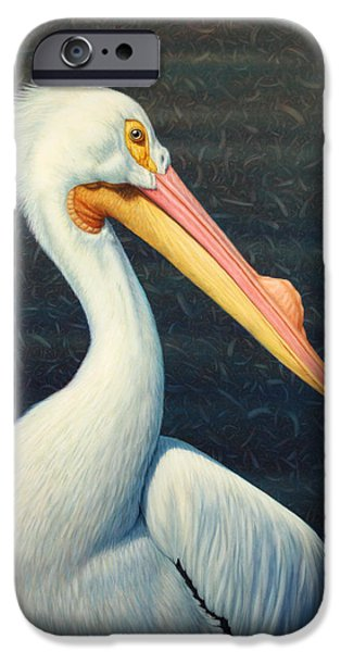 Birds iPhone Cases - A Great White American Pelican iPhone Case by James W Johnson