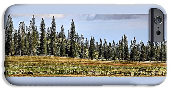 Horse iPhone Cases - A Lanai Ranch iPhone Case by DJ Florek