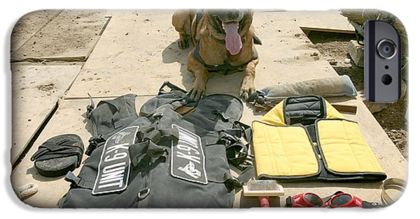 Police Dog iPhone Cases - A Military Police Dog Sits iPhone Case by Stocktrek Images