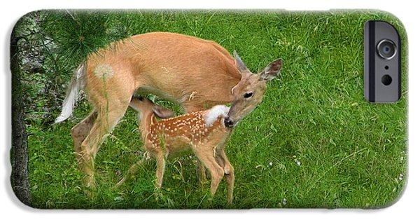 Instinct iPhone Cases - A Mothers Love - Doe and Fawn iPhone Case by Christine Till
