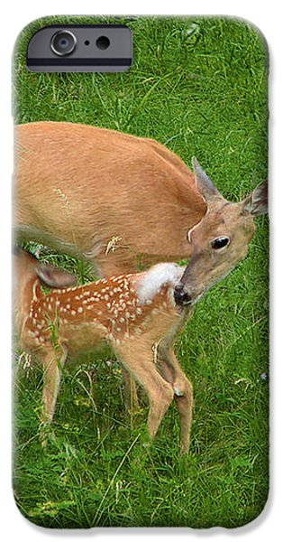 A Mother's Love - Doe and Fawn iPhone Case by Christine Till
