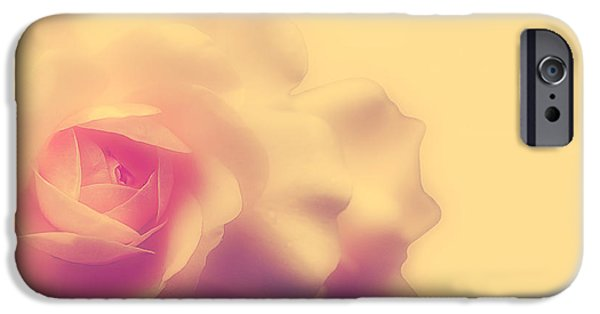 Peach Roses iPhone Cases - A New Day iPhone Case by Lois Bryan