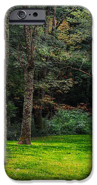 A Place to Unwind iPhone Case by Scott Hervieux