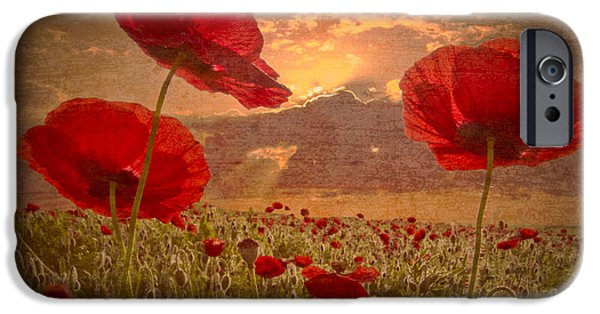Meadow Photographs iPhone Cases - A Poppy Kind of Morning iPhone Case by Debra and Dave Vanderlaan