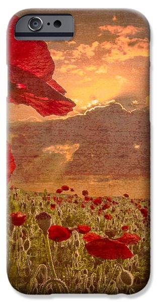 A Poppy Kind of Morning iPhone Case by Debra and Dave Vanderlaan