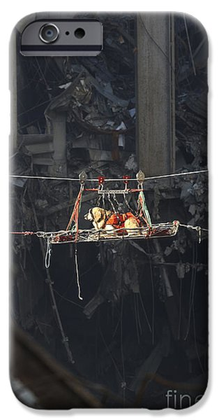Pulley iPhone Cases - A Rescue Dog Is Transported iPhone Case by Stocktrek Images