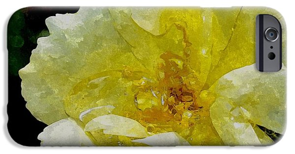 Prescott Digital iPhone Cases - A Rose Is A Rose RRWC iPhone Case by Jim Brage
