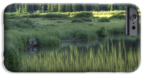 Willow Lake iPhone Cases - A Study In Green iPhone Case by David Bearden