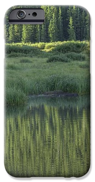 A Study In Green iPhone Case by David Bearden