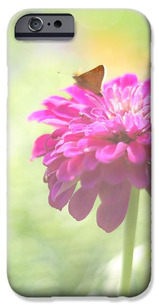 A Summer's Song iPhone Case by Amy Tyler
