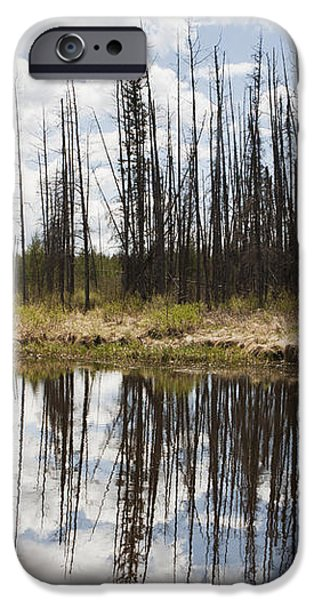 A Tranquil River With A Reflection iPhone Case by Susan Dykstra