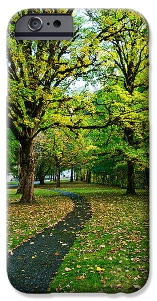 A walk in the park iPhone Case by Dan Mihai