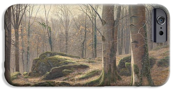 Winter Morning iPhone Cases - A Winter Morning iPhone Case by James Thomas Watts