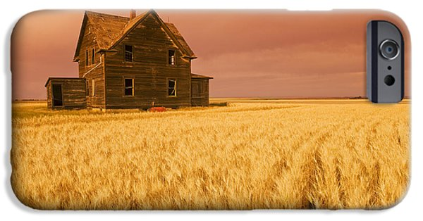 Abandonment iPhone Cases - Abandoned Farm House, Wind-blown Durum iPhone Case by Dave Reede