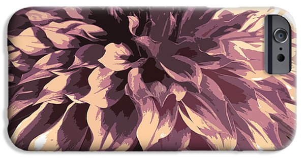 Nature Divine iPhone Cases - Abstract 6 iPhone Case by Sumit Mehndiratta