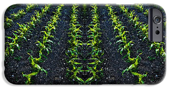 Regiment iPhone Cases - Abstract Baby Corn iPhone Case by Meirion Matthias