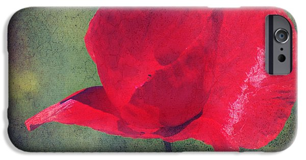 Flora Mixed Media iPhone Cases - Abstract poppy iPhone Case by Angela Doelling AD DESIGN Photo and PhotoArt