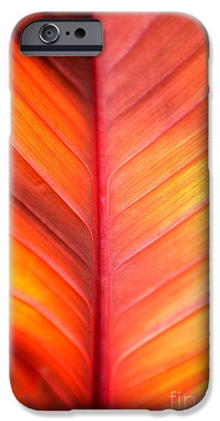 Business iPhone Cases - Abstract iPhone Case by Tony Cordoza