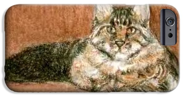 Maine Drawings iPhone Cases - ACEO Maine Coon Cat iPhone Case by Bruce Lennon