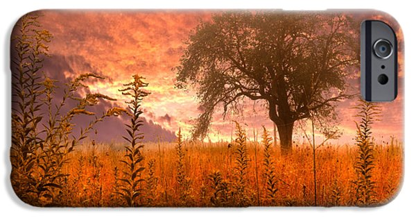 High Park Fire iPhone Cases - Aflame iPhone Case by Debra and Dave Vanderlaan