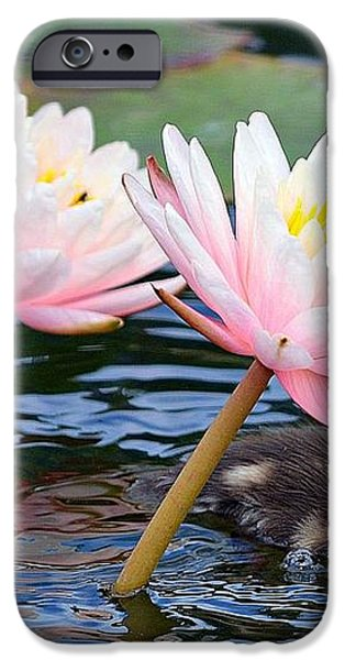 Afloat Among Lillies iPhone Case by Fraida Gutovich