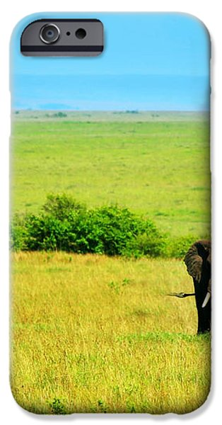 African Elephant in the wild iPhone Case by Anna Omelchenko