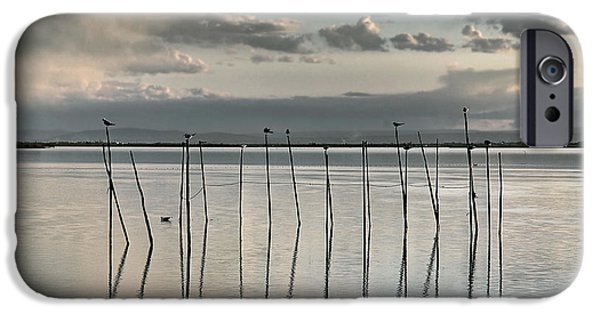 Recently Sold -  - Crops iPhone Cases - Albufera gris. Valencia. Spain iPhone Case by Juan Carlos Ferro Duque