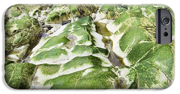 Alga iPhone Cases - Algae Covered Rocks iPhone Case by Georgette Douwma