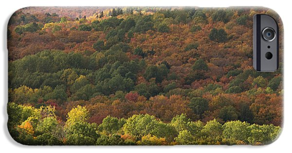 Fall iPhone Cases - Algonquin in Autumn iPhone Case by Cale Best
