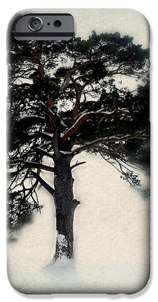 All in white iPhone Case by Julie Hamilton